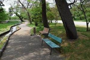 公園イメージ